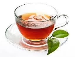 torah&tea.jpg