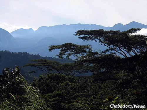 The lush hills of the Panamanian highlands near Boquete. (Photo: Wikimedia Commons)