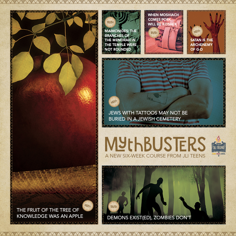 mythbusters_fb-square806px.jpg