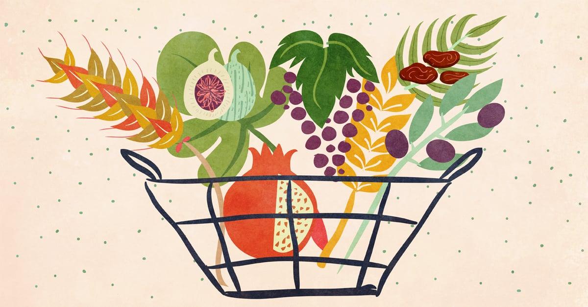 Bikkurim: First Fruits - Torah Insights - Parshah