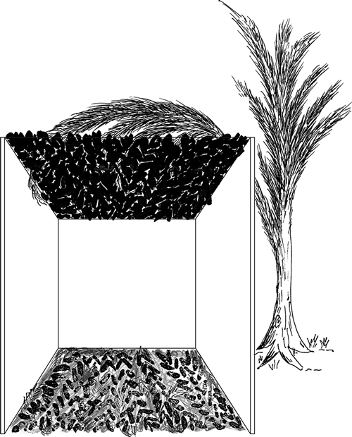 Fig. 6: The second paragraph of sec. 626:7 explains why this sukkah is valid. Its s'chach is so plentiful that even if we were to remove an amount equivalent to the invalid material intermingled with it (150% – 60% = 90%), the greater part of the floor area would still be shaded.