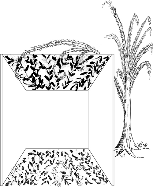 Fig. 4: In this sukkah, the valid s'chach is so sparse that its shade covers only (say) 40% of the floor area. Since in this case the shade (say 30%) produced by the invalid material is disregarded (see sec. 626:6), the sukkah is invalid, because less than half of its floor area is shaded by valid s'chach.