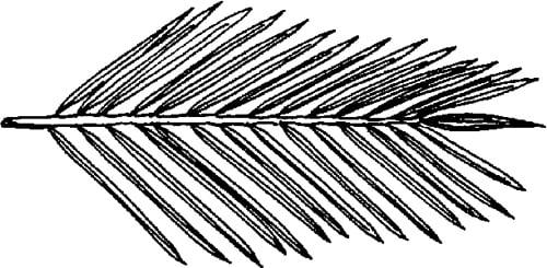 Fig. 19: See sec. 645:4.