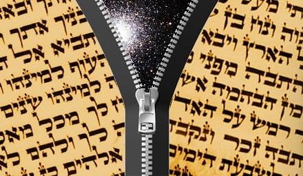 Torah Unzipped image.jpg