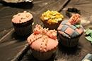 The Jewish Girls Club: Cupcake Craze