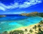 Hawaii scenery.jpg