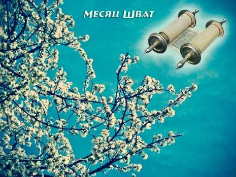 spring_blossom_month-shvat.jpg